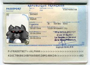À raison de 86 euros pour 10 ans de validité, votre passeport vous coûte 8.60€/an, plus un sacré paquet d'emmerdes.